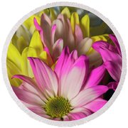 Round Beach Towel featuring the photograph Carnations by Ester Rogers