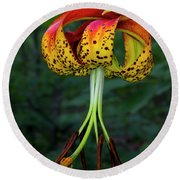 Carolina Lily Round Beach Towel