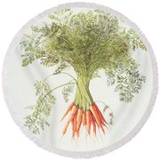 Carrots Round Beach Towel by Margaret Ann Eden
