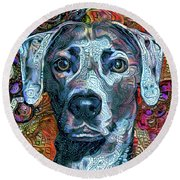 Cash The Blue Lacy Dog - Cropped Round Beach Towel