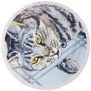 Cat Alert  Round Beach Towel
