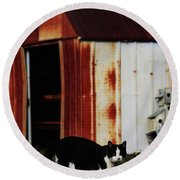 Cat And The Tool Shed Round Beach Towel by Kim Henderson