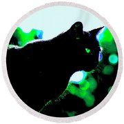 Cat Bathed In Green Light Round Beach Towel by Gina O'Brien