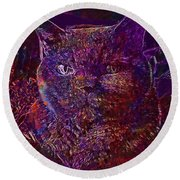 Round Beach Towel featuring the digital art Cat Cat S Eyes Eye Animal Pet  by PixBreak Art
