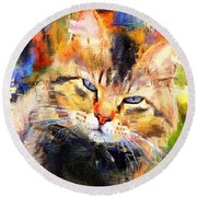 Cat Color Round Beach Towel