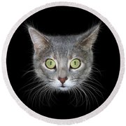 Cat Head On Black Background Round Beach Towel