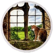 Cat In The Castle Window-close Up Round Beach Towel