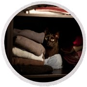 Round Beach Towel featuring the photograph Cat In The Closet by Laura Melis