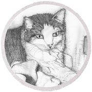 Domestic Cat Round Beach Towel