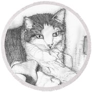 Domestic Cat Round Beach Towel