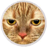 Cat Musya Round Beach Towel by Sergey Lukashin
