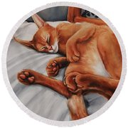Cat Nap Round Beach Towel by Jean Cormier