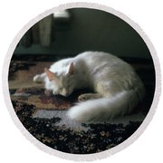 Cat On A Puzzle Round Beach Towel