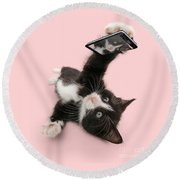 Cat Selfie Round Beach Towel