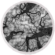 Catalpa And Altostrato Q Round Beach Towel