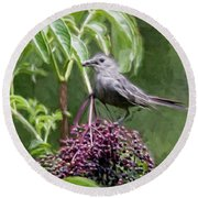 Catbird Round Beach Towel