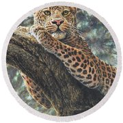 Round Beach Towel featuring the painting Catching The Sun by Alan M Hunt