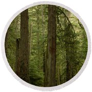 Cathedral Grove Round Beach Towel