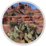 Cathedral Rock Cactus Grove Round Beach Towel