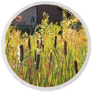 Cattails And Barn Round Beach Towel