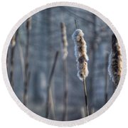 Cattails In The Winter Round Beach Towel by Sumoflam Photography