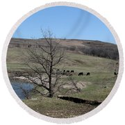 Cattle Along Deep Creek Round Beach Towel