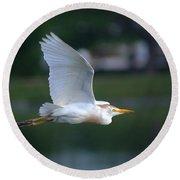 Cattle Egret Profile Portrait In Flight Round Beach Towel