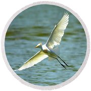 Cattle Egret Right Banking Turn - Digitalart Round Beach Towel