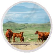 Cattle Guards Round Beach Towel
