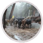 Cattle Moving Round Beach Towel by Diane Bohna