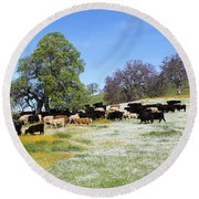 Cattle N Flowers Round Beach Towel by Diane Bohna