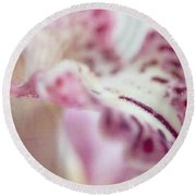 Round Beach Towel featuring the photograph Cattleya Orchid Abstract 4 by Jenny Rainbow