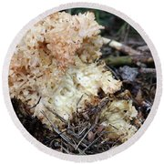 Cauliflower Fungus Round Beach Towel by Michal Boubin