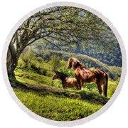 Cavalla Plains Horses - Cavalli Al Pian Della Cavalla Round Beach Towel