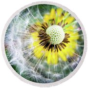 Celebration Of Nature Round Beach Towel