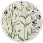 Centaurea Montana And Cornflowers Round Beach Towel