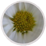 Round Beach Towel featuring the photograph Center Piece by Heidi Poulin