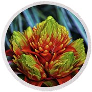 Round Beach Towel featuring the photograph Centerpiece - Bromeliad 005 by George Bostian