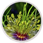 Centerpiece - Love In The Mist Macro Round Beach Towel by George Bostian