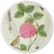 Centifolia Rose, Lavender, Tortoiseshell Butterfly, Goldfinch And Crested Pigeon Round Beach Towel