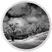 Central California Ranch Round Beach Towel by Sean Foster