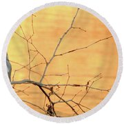 Round Beach Towel featuring the photograph Chagrin River Gold by Bruce Patrick Smith