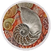 Chambered Nautilus Shell Abstract Round Beach Towel