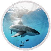 Change Of Direction Round Beach Towel by Shane Linke