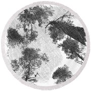 Charcoal Trees Round Beach Towel