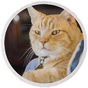 Charlie Cat Round Beach Towel