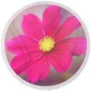 Charming Cosmos Round Beach Towel