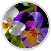 Charming Viola 2 Round Beach Towel