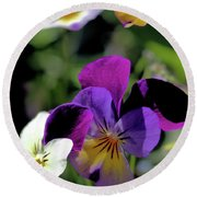 Charming Viola Round Beach Towel