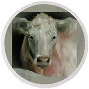 Charolais Cow Painting Round Beach Towel